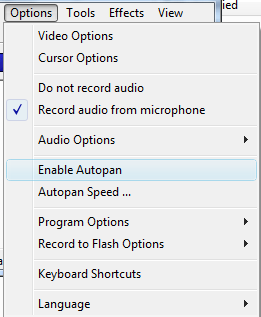 The options menu on CamStudio.